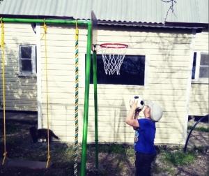Щит с кольцом баскетбольным 295 мм к Л-ОБРАЗНОЙ СТОЙКЕ